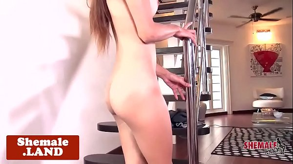 Ladyboy, Ladyboy solo, Spreading ass, Ass solo